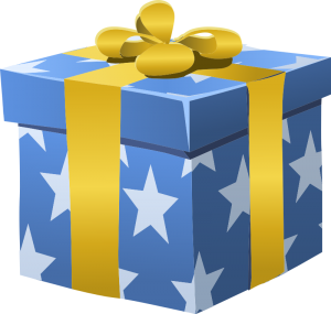 misc-bag-gift-box-wrapped-800px